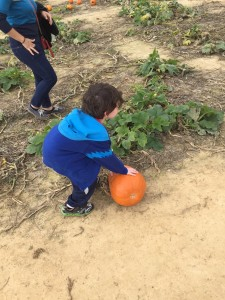 Konnor at the Pumpkin Patch - Jackson's Orchard