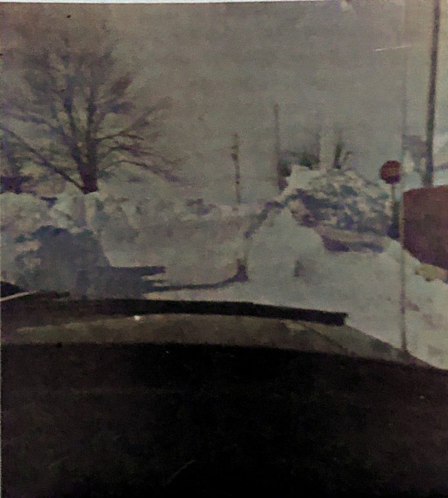 Drift in front of Sarah Andrews House